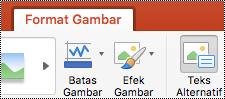 Tombol Teks Alt pada pita di PowerPoint untuk Mac