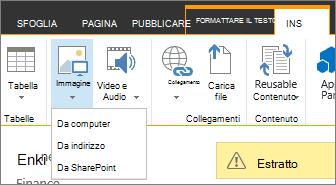 Pulsante Inserisci immagine con menu origini dati sottostante.