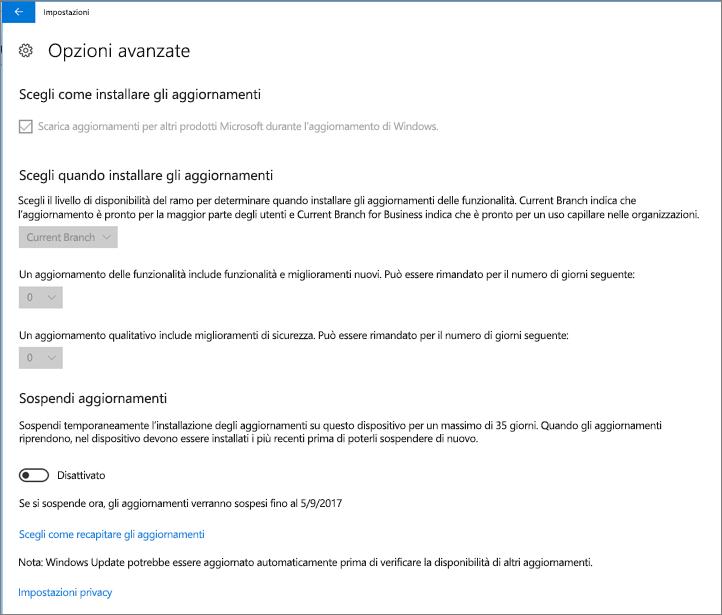 Le opzioni degli aggiornamenti avanzati di Windows sono tutte disattivate.