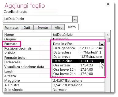 Immagine della finestra delle proprietà con l'elenco a discesa Formato visualizzato.