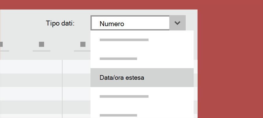 Mostra tipo di dati di Access