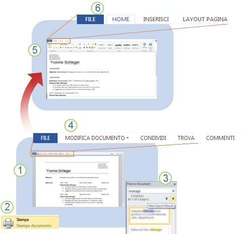 Word Web App at a glance