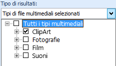 Nella casella Tipo di risultati selezionare i tipi di file multimediali da includere nei risultati della ricerca.