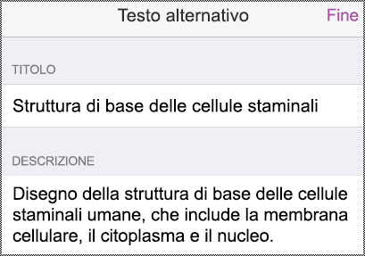 Finestra di dialogo Testo alternativo nell'iPhone.
