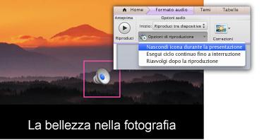 Nascondere l'icona durante la presentazione