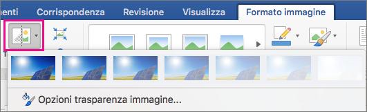 Opzione Trasparenza evidenziata nella scheda Formato immagine.