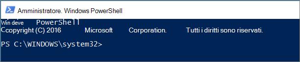 Qual è l'aspetto di PowerShell quando si apre per la prima volta.