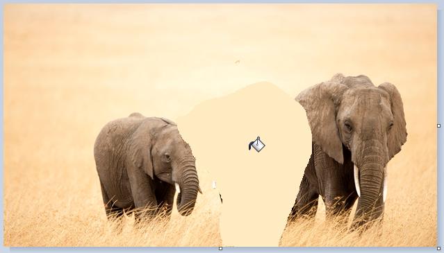 Immagine ritagliata: colore di riempimento applicato alla parte ritagliata dell'immagine.