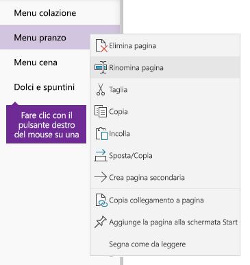 Schermata che mostra una pagina rinominata in OneNote