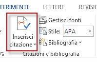 Pulsante Inserisci citazione in Word 2013.