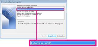 Opzione Esporta in un file nell'Importazione/Esportazione guidata