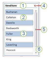 Elementi di un filtro dei dati di tabella pivot