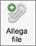 Pulsante Allega file