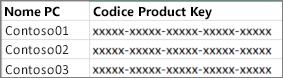 Esempio di un elenco a due colonne di codici Product Key.