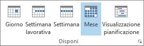Gruppo Disponi nella scheda Home: Giorno, Settimana, Settimana lavorativa, Mese e Visualizzazione pianificazione