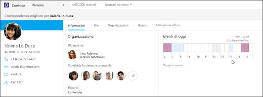 Schermata: ricerca di persone con Bing per le aziende.