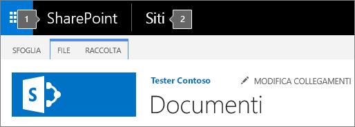 Angolo superiore sinistro della schermata di SharePoint 2016 con l'icona di avvio delle app e il titolo