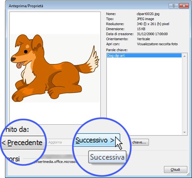 Per spostarsi tra le immagini selezionare i pulsanti Precedente e Successiva nella finestra di dialogo Anteprima/Proprietà.