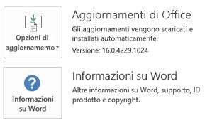 Quando Office è stato installato con la tecnologia A portata di clic, le informazioni sull'applicazione e gli aggiornamenti hanno questo aspetto.