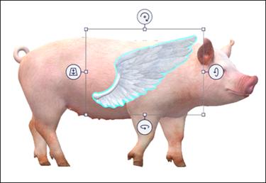 Modelli di Wing e Pig sullo schermo.