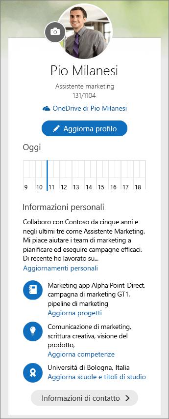 Screenshot del contenuto predefinito dell'area Informazioni personali del pannello comandi di Delve.