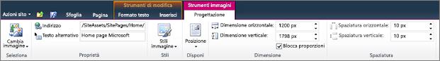 Strumenti immagine sulla scheda consente di impostare dimensioni, stile, posizione e il testo alternativo per le immagini.