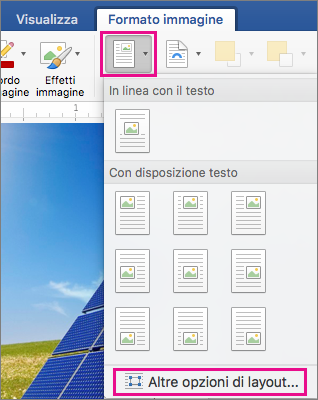 Opzioni Posizione e Altre opzioni di layout evidenziate nella scheda Formato immagine.