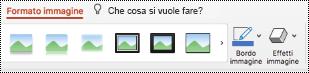 Pulsante Testo alternativo sulla barra multifunzione per un'immagine in PowerPoint per Mac.