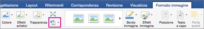 Opzione Reimposta immagine evidenziata nella scheda Formato immagine.