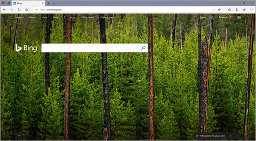 Home page di Bing
