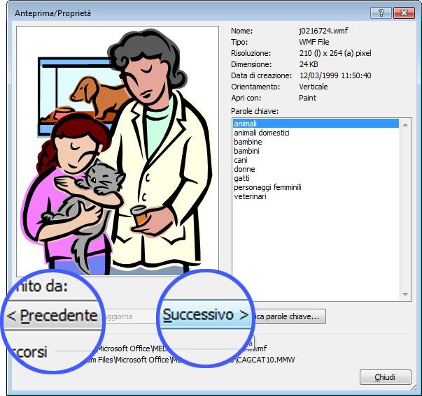 Per spostarsi tra le immagini, selezionare i pulsanti Precedente e Successiva nella finestra di dialogo Anteprima/Proprietà.