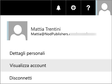 Menu dell'utente con l'opzione Visualizza account selezionata.