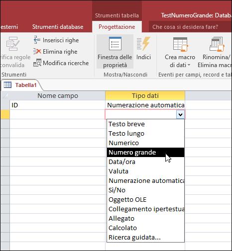 Screenshot dell'elenco dei tipi di dati in una tabella di Access. Opzione Numero grande selezionata.