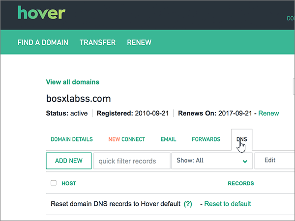 Selezionare la scheda DNS