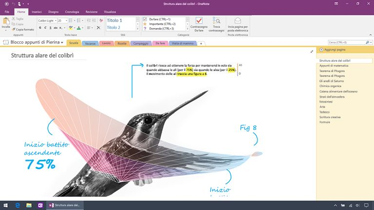 Screenshot di OneNote 2016