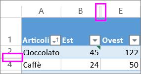 Le linee doppie tra righe e colonne indicano la presenza di righe o colonne nascoste