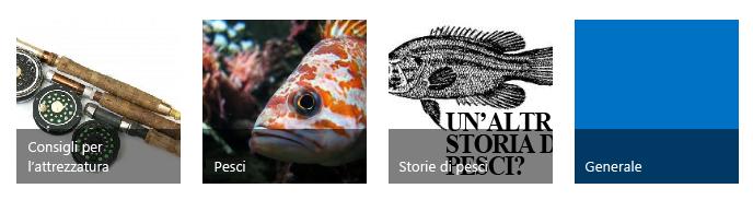 Quattro riquadri di categoria, ciascuno con un'immagine relativa alla pesca e un titolo
