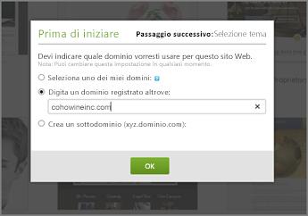 In GoDaddy First things first, immettere un dominio registrato altrove