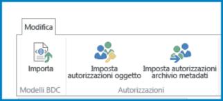 schermata della barra multifunzione modifica nelle impostazioni del servizio di integrazione applicativa, in cui sono visibili il pulsante importa per il modello bdc e le impostazioni delle autorizzazioni.