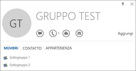 Screenshot della scheda Membri della scheda contatto di Outlook per il gruppo denominato Gruppo di test. Sottogruppo 1 e Sottogruppo 2 vengono visualizzati come membri.