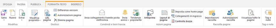 Schermata della scheda Pagina che contiene numerosi pulsanti per la modifica, il salvataggio, l'archiviazione e l'estrazione delle pagine di pubblicazione