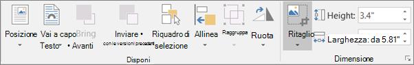 Nella scheda Formato, fare clic su Ritaglia.