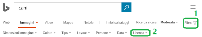 Fare clic sul pulsante filtro al margine destro della finestra e quindi fare clic sul menu per il filtro delle licenze.
