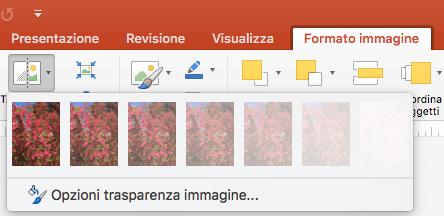 Opzioni di trasparenza preimpostate per le immagini