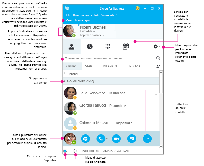 Finestra Contatti di Skype for Business sotto forma di diagramma