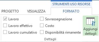 Scheda Formato strumenti gestione attività, pulsante Aggiungi dettagli