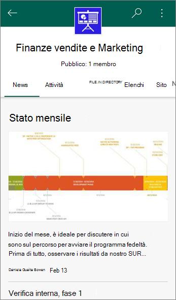 Schermata della scheda News in un sito del Team