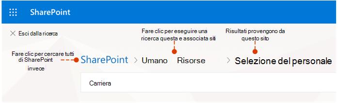 Screenshot che mostra la posizione dei risultati e le posizioni alternative per la ricerca