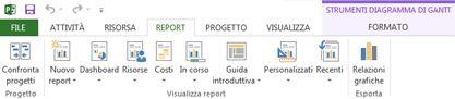 scheda report in project 2013