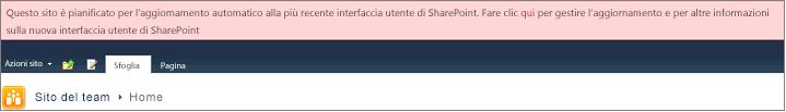 Banner rosa che indica il sito è programmata per l'aggiornamento automatico